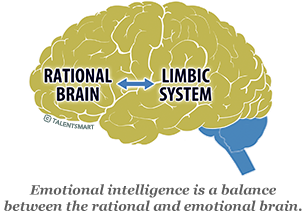 image: brain of hightly emotionally intelligent people